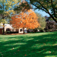 Fall Lawn care and Landscaping ideas for the season
