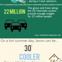 Learn what your lawn can do for you!